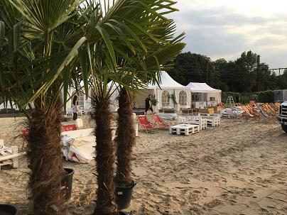 Palmen für ein Event